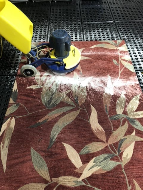 area rug cleaning tips