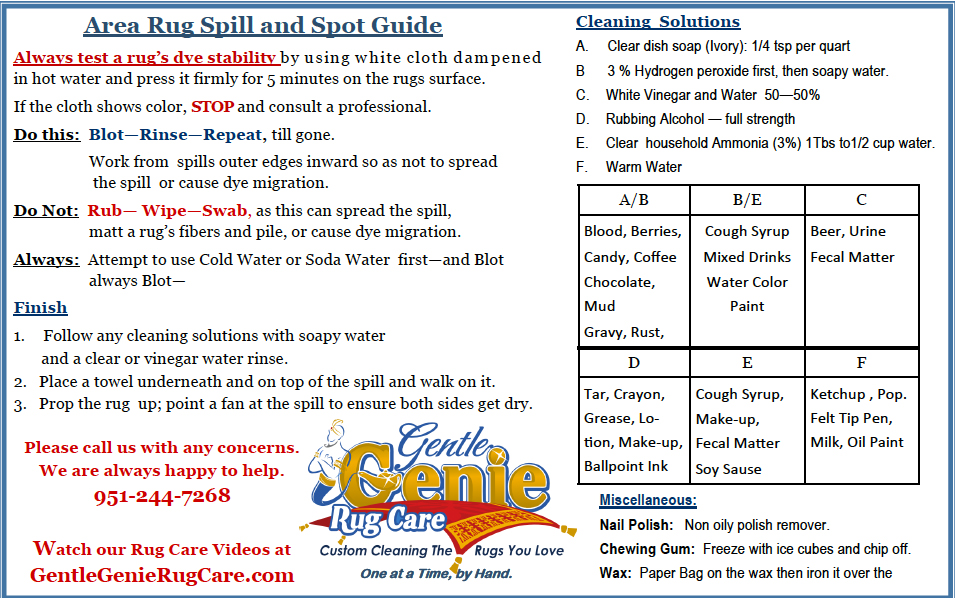 area rug spill and spot guide
